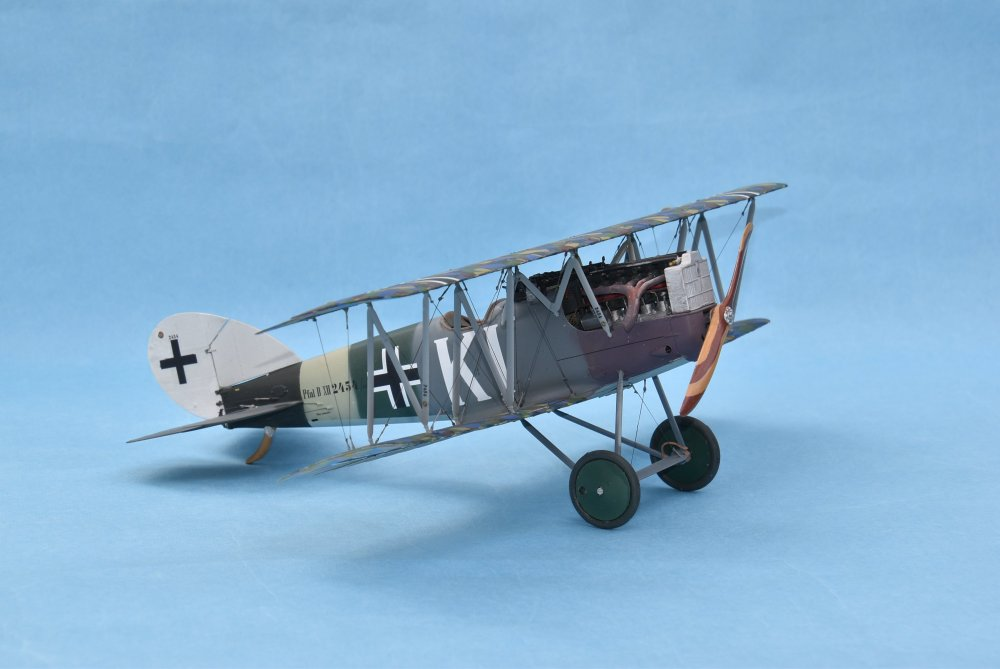 Pfalz D XII Wingnut Wings 32019 32nd -3.JPG